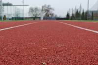 К Универсиаде в Екатеринбурге предлагают построить и отремонтировать более 30 спортивных объектов
