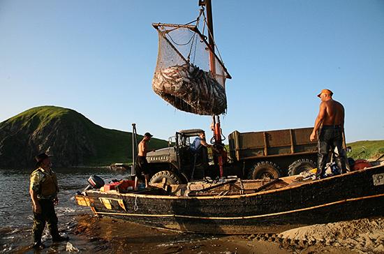 Госконтроль в сфере рыболовства хотят проводить без плановых проверок