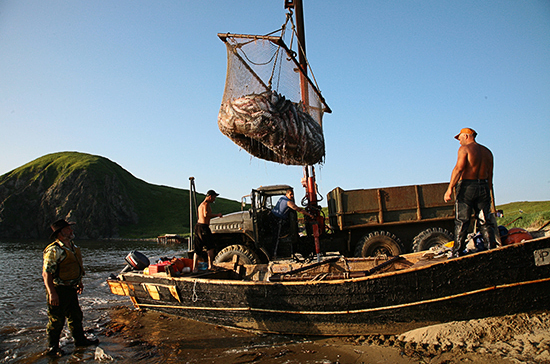 Госконтроль в сфере рыболовства предложили проводить без плановых проверок