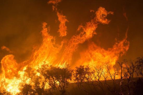 Пожар в зоне отчуждения Чернобыльской АЭС ликвидирован