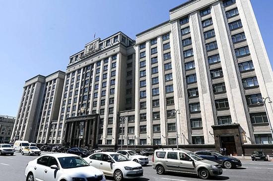 Сведения о доходах депутатов Госдумы за 2019 год опубликуют 23 апреля