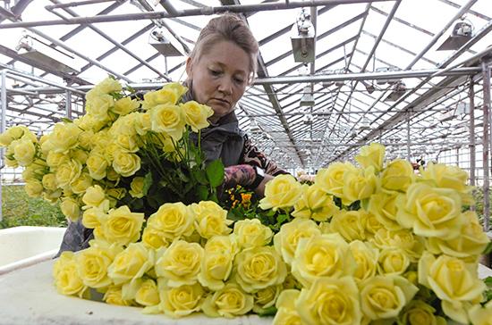 На Пасху в Германии открыли цветочные магазины