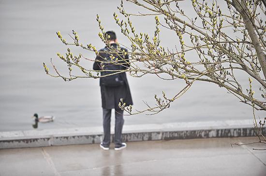 Синоптики предупредили москвичей о ненастной погоде