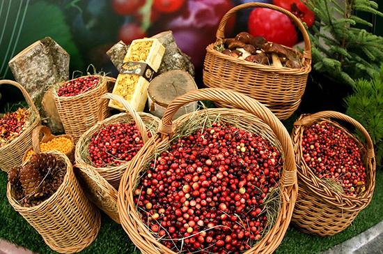 Лесные ягоды и орехи могут заменить имбирь и лимоны — Якубовский