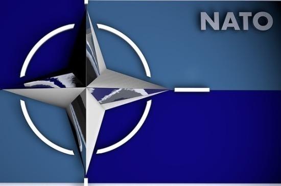 Эксперт: НАТО продолжает «качать военные мышцы» даже во время пандемии