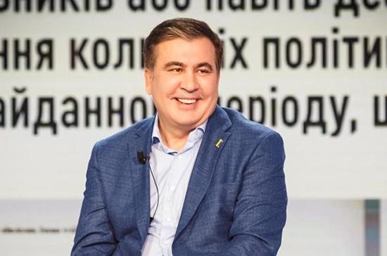 Назначение Саакашвили может испортить отношения Киева и Тбилиси, считает грузинский депутат