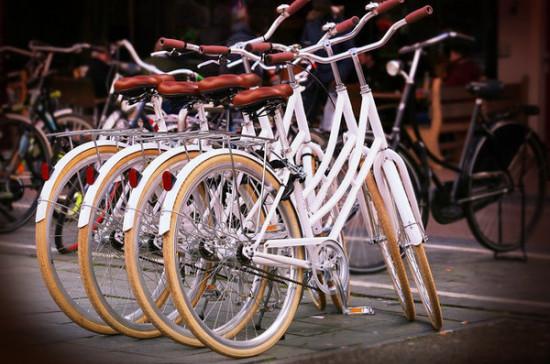 Петербургским волонтёрам могут предоставить бесплатные велосипеды