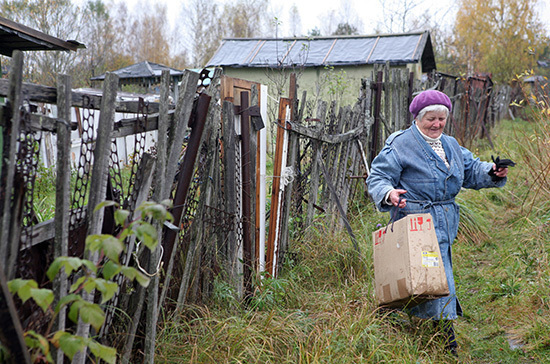 Две недели на карантине проведут уехавшие на дальние дачи петербуржцы