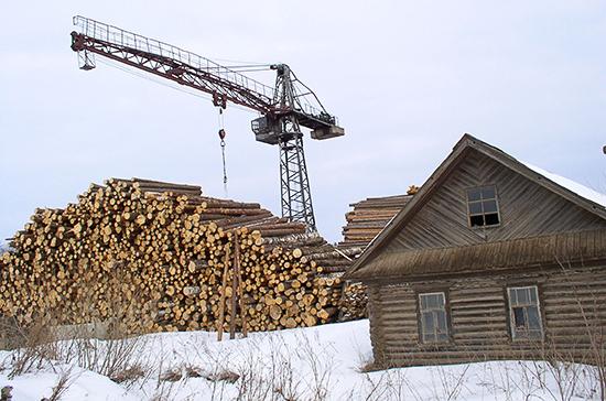 В России намерены решить проблему «чёрных лесорубов» с помощью нового закона