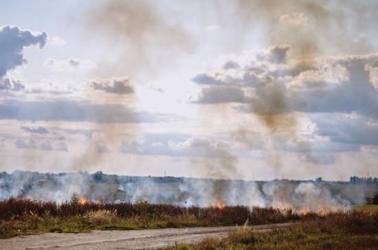 В Приангарье нашли подозреваемых в поджоге леса чиновников