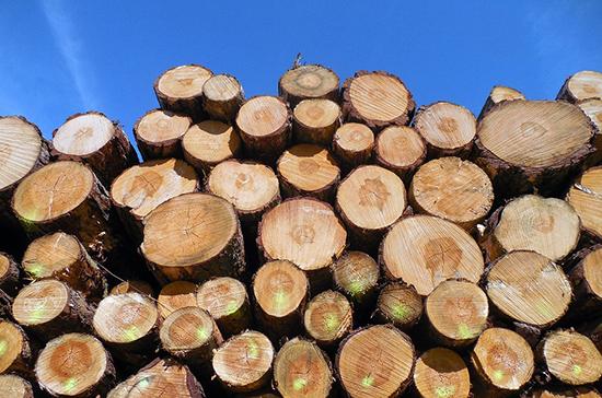 Древесину предлагают запретить перевозить без электронных разрешений