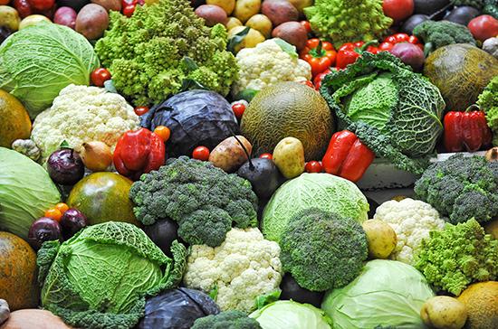 Учёным предстоит выяснить, как продукты с ГМО влияют на заражаемость COVID-19