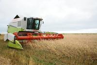 В Краснодарском крае возобновляют работу предприятия АПК и промышленности