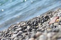 В Севастополе курортный сезон может открыться с 15 июня