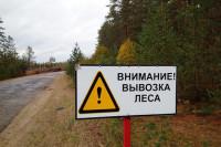 Власти регионов должны следить за целевым использованием дров гражданами, считает сенатор