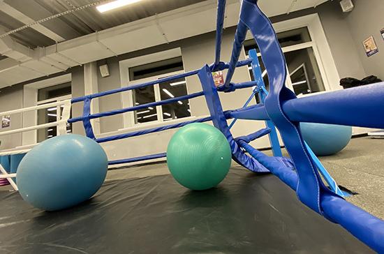 Национальные виды спорта и фитнес-индустрию предлагают включить в Стратегию развития физкультуры