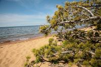 Лесные посёлки на Байкале предлагают сделать легальными