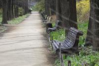 Парки в Подмосковье откроются для свободного посещения