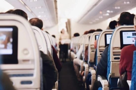 Штрафы для авиадебоширов могут составить до 500 тысяч рублей