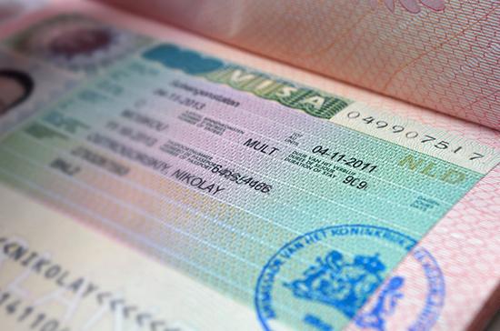 Путин поручил принять закон о введении единой электронной визы для иностранцев