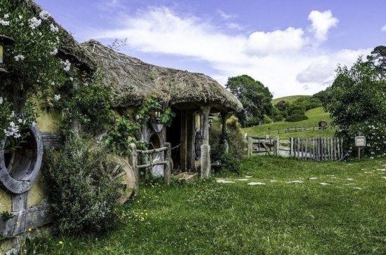 СМИ: Новая Зеландия первая в мире отменит все ограничения по COVID-19