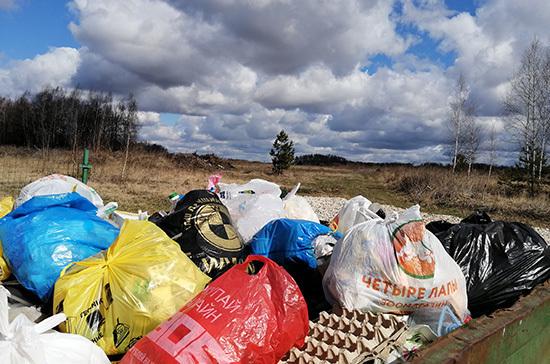 В России предлагают в 10 раз увеличить штрафы за стихийные свалки