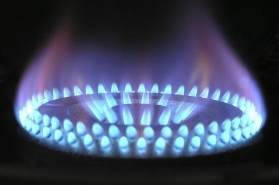 Комитет Госдумы по энергетике направит запросы в ФАС по завышенным ценам на газ