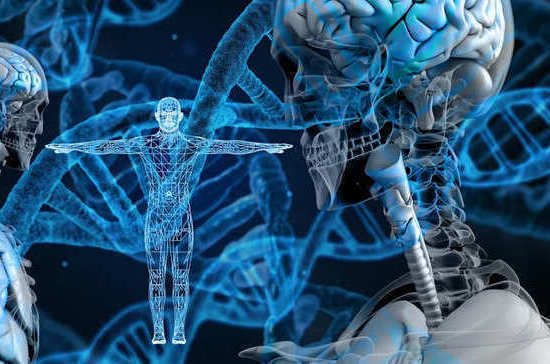 Учёные научились предсказывать продолжительность жизни по ДНК