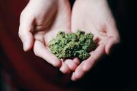 Порядок возбуждения дел о сбыте наркотиков могут изменить