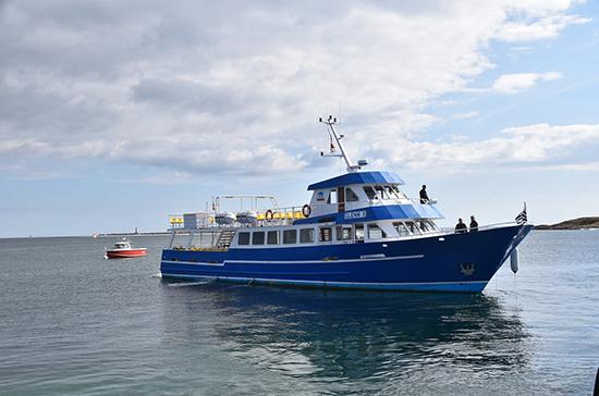 Петербург надеется на возвращение круизных судов к зиме
