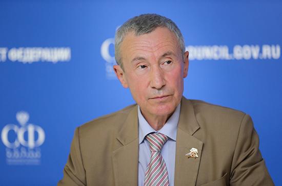 Климов: комиссия Совфеда даст оценку попыткам вмешательства извне в голосование по Конституции