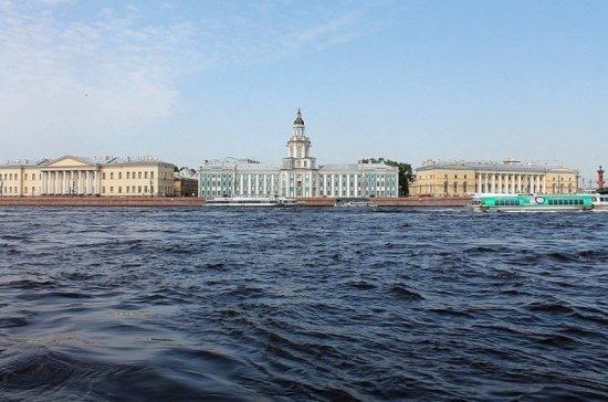 В Санкт-Петербурге осваивают новый формат концертов в условиях коронавируса