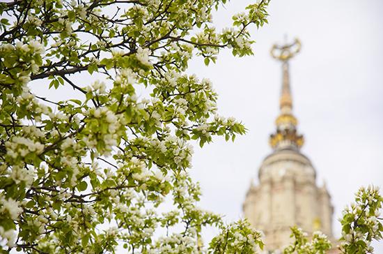 Синоптик рассказала о погоде на следующей неделе в Москве