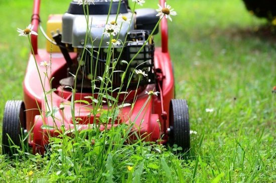 Садовую технику предлагают освободить от обязательной регистрации