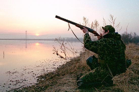 Охотники смогут принимать участие в регулировании численности животных