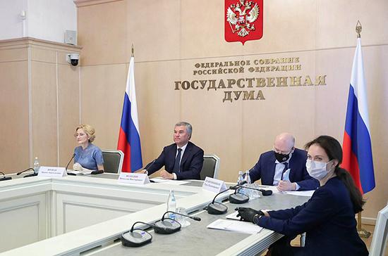 Володин предложил проанализировать международные соглашения России на соответствие Конституции