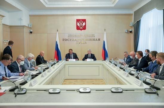 В Госдуме выявили факты воздействия иностранных НПО на голосование по Конституции