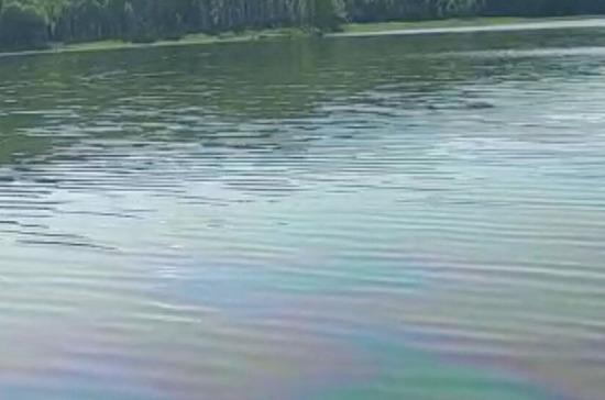В Фонде дикой природы оценили последствия нефтеразлива в Хабаровском крае