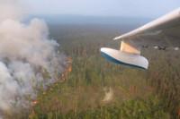 Генпрокуратура поручила усилить надзор за пожароопасной обстановкой в лесах