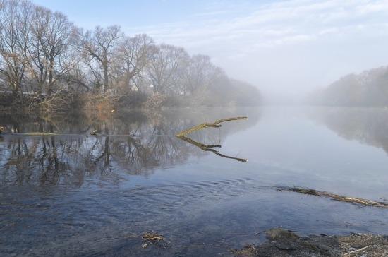 В России предложили создать систему биологической мелиорации водоемов