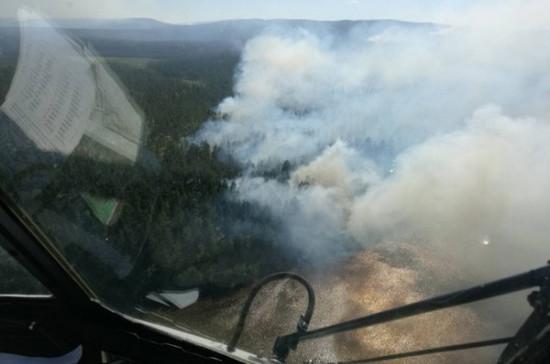 Площадь лесных пожаров в России за неделю возросла больше чем в 2 раза