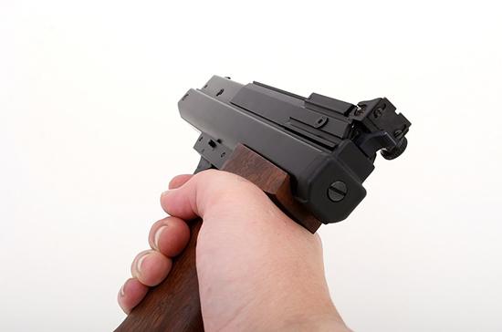 Выдачу лицензий на оружие предложили перевести в электронный вид