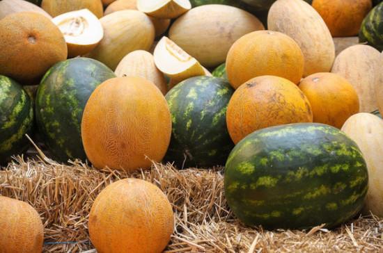 В Роспотребнадзоре дали рекомендации по выбору арбузов и дынь