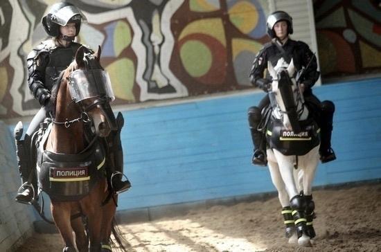 Лошадям из конной полиции прописали солярий