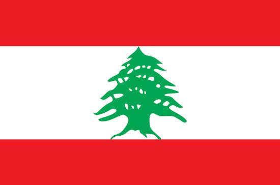 СМИ: министр окружающей среды Ливана подал в отставку