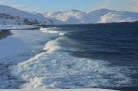 Минприроды предложило увеличить коэффициенты для расчёта ущерба северным морям