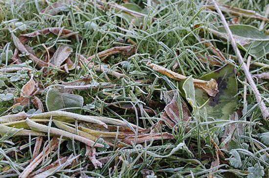 Синоптики предупредили о первых заморозках в регионах