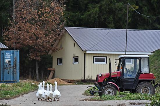 Плотников призвал сохранить гранты для фермеров в городских округах