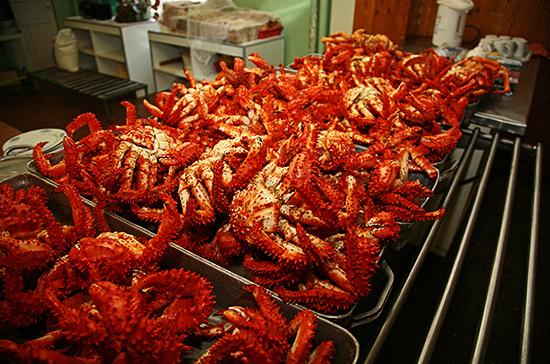 Минсельхоз предлагает уменьшить объёмы добычи глубоководных крабов на Дальнем Востоке