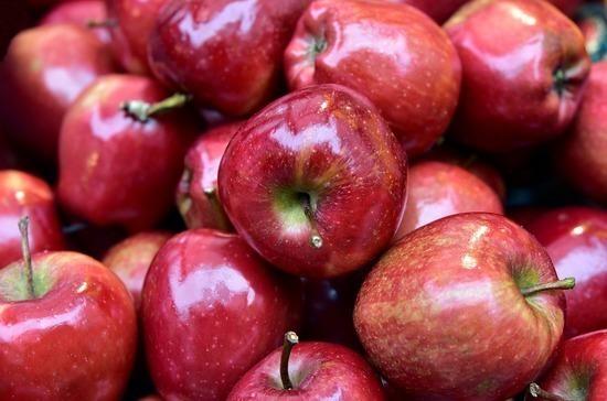В Совете Федерации призвали к большему контролю за ввозом ГМО-продукции